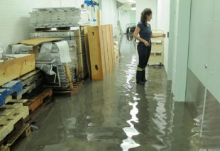fine-art-conservation-disaster-flooding